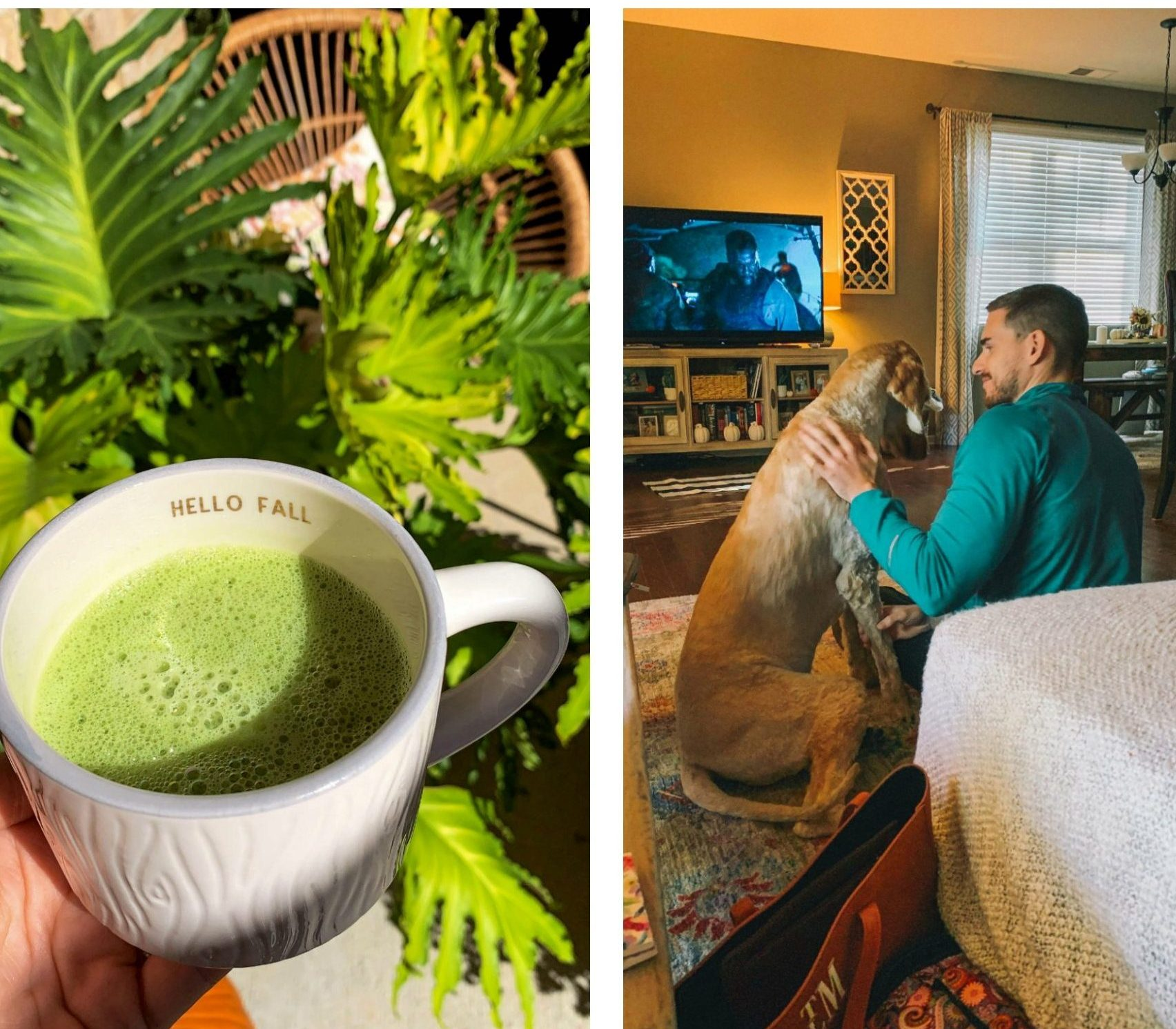 recap blogger, lifestyle, simply taralynn, matcha tea, gluten free, dairy free
