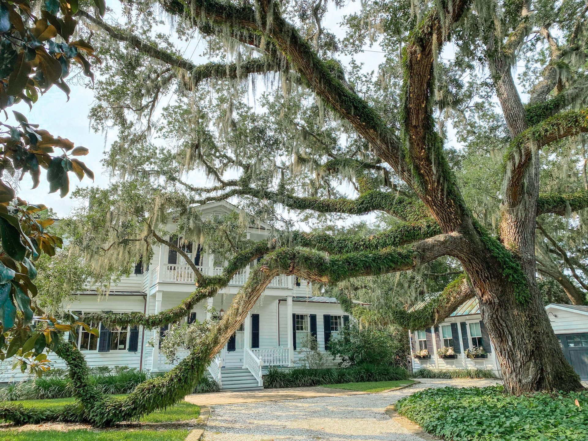 Beaufort travel, Thomas Rhett house, bed and breakfast, low country, travel guide, weekend trip, road trip, marsh, where to eat, where to stay, what to do, southern, Spanish moss, beautiful travel