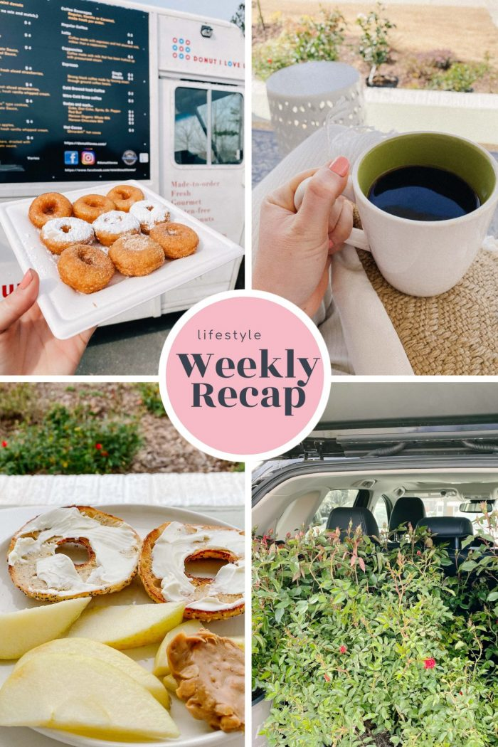 A Week of Home Projects and Preparing for Spring