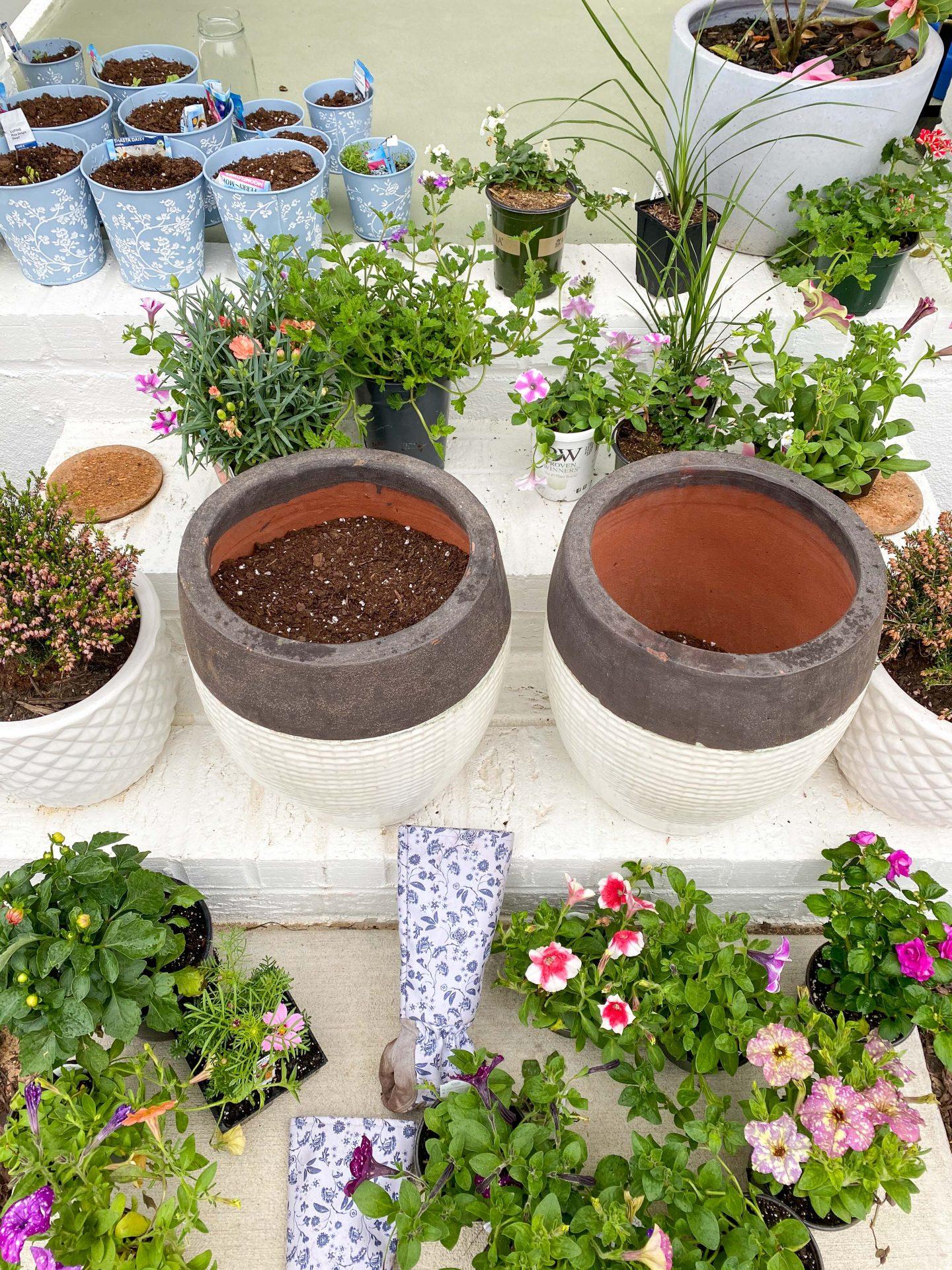 Wilsons rock hill nursery, rock hill, South Carolina, flowers, garden center, potting, pots, flowers, front porch