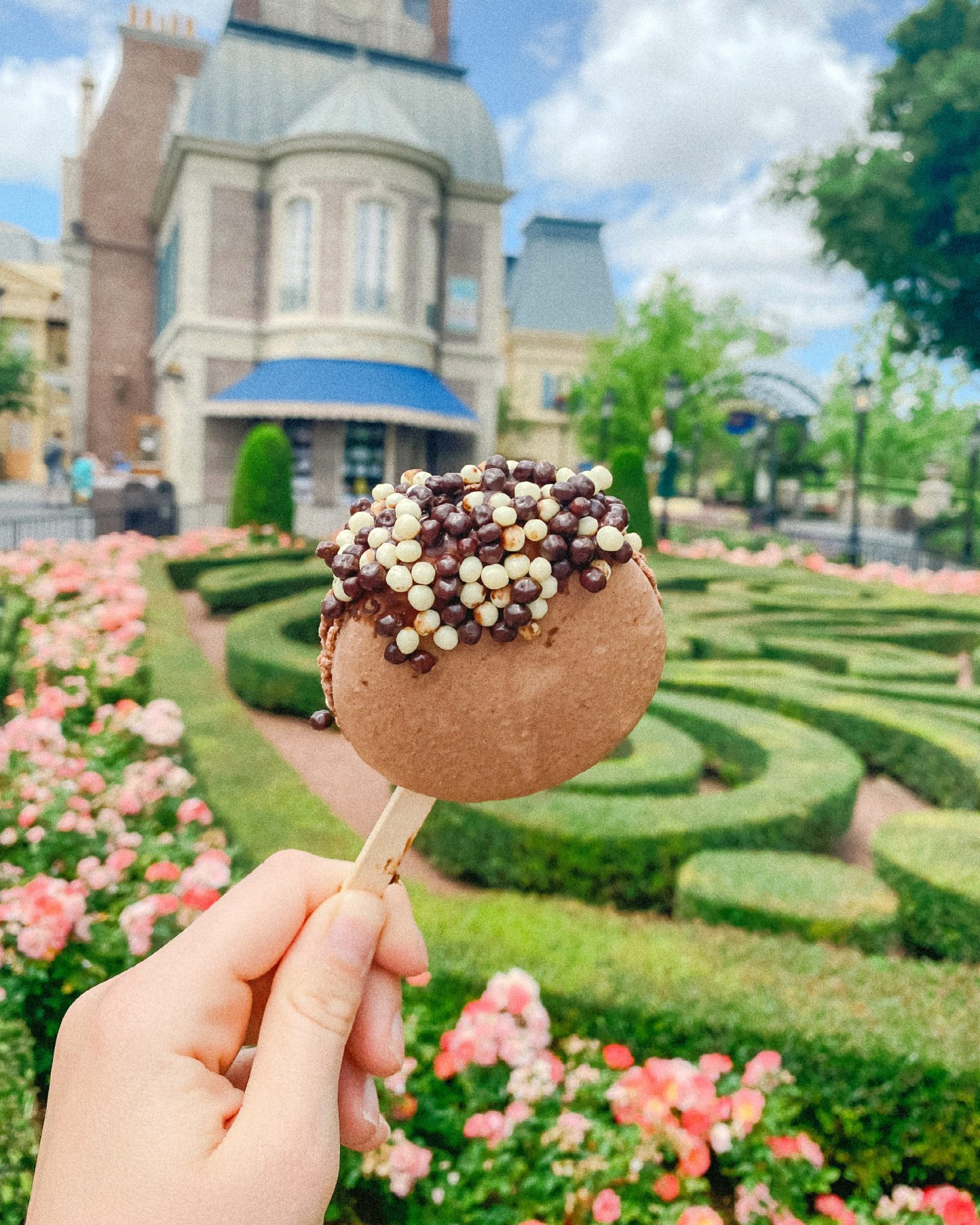 Epcot, drinks, food, Walt Disney World, Flower and Garden Festival, What We Ate At Epcot 2021, travel guide, Orlando Florida, Epcot blog, what is good at Epcot, what to get at Epcot, flowers, ultimate travel guide to walt disney world, skyliner, parks, park hopper,