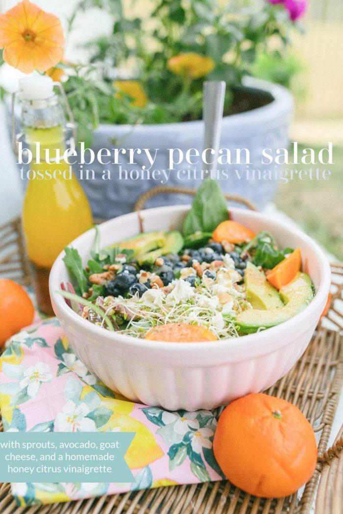 Blueberry Pecan Salad with a Honey Citrus Garlic Vinaigrette